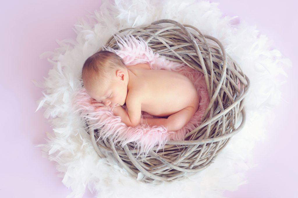 Fotografía de bebés Newborn en un cesto y plumas suaves.